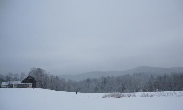 snowyskiday